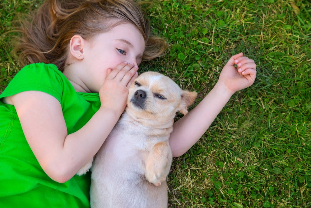 Can dogs talk - the future of dog language